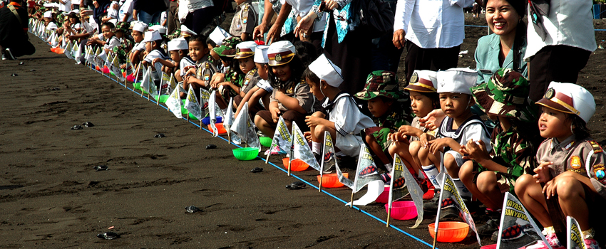 Banyuwangi Sea Turtle Foundation